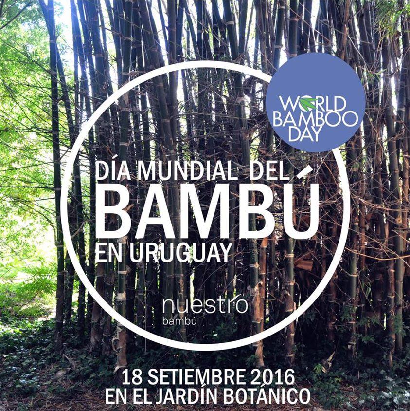 Charla sobre bamb museo jard n bot nico prof atilio for Actividades en el jardin botanico