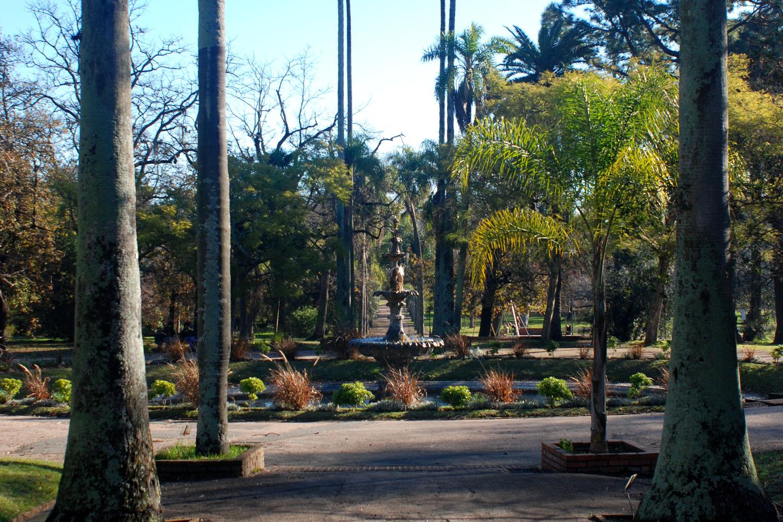 Presentaci n museo jard n bot nico prof atilio lombardo for Informacion sobre el jardin botanico