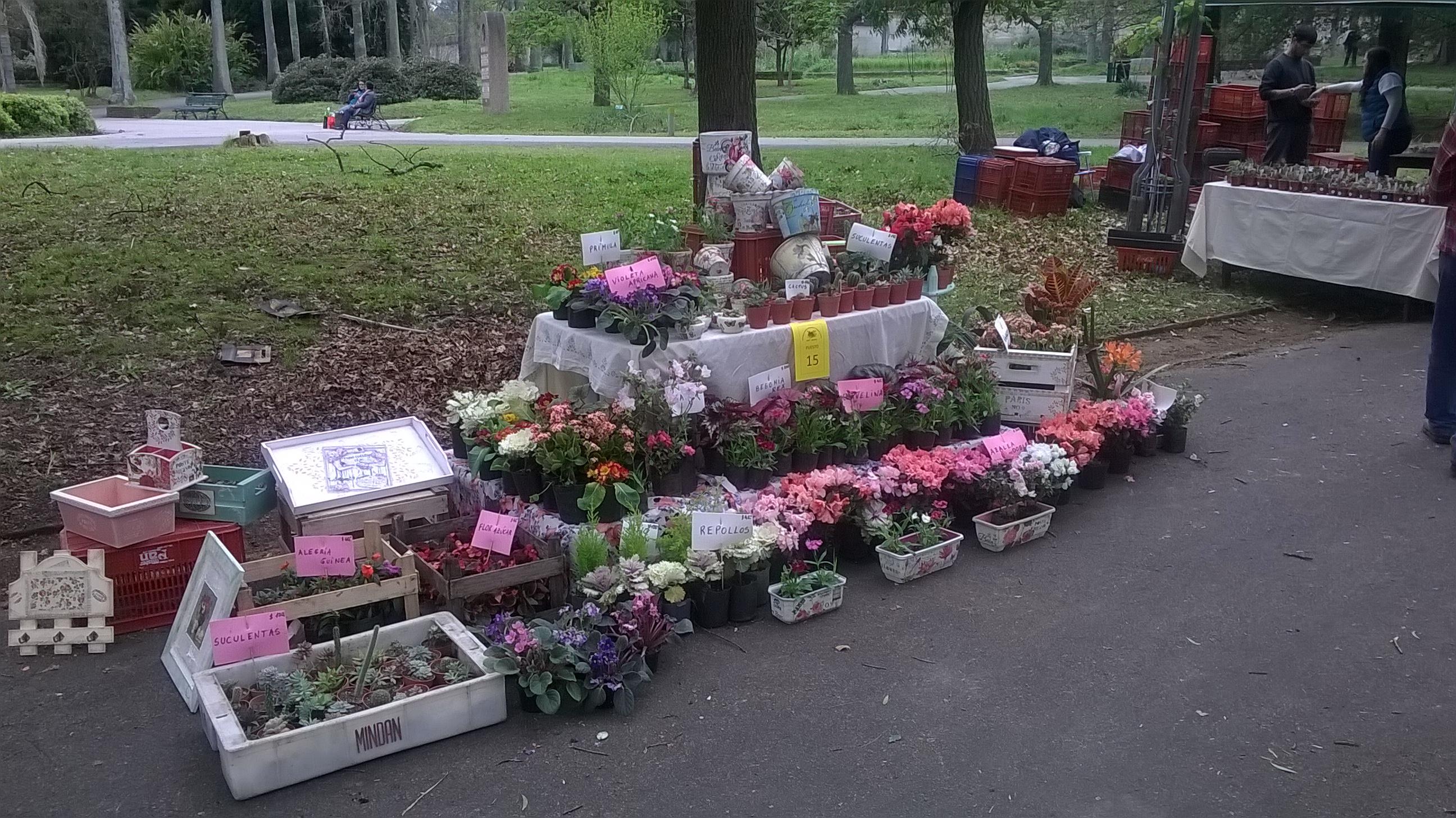 Feria de plantas octubre en el jard n bot nico museo for Actividades jardin botanico