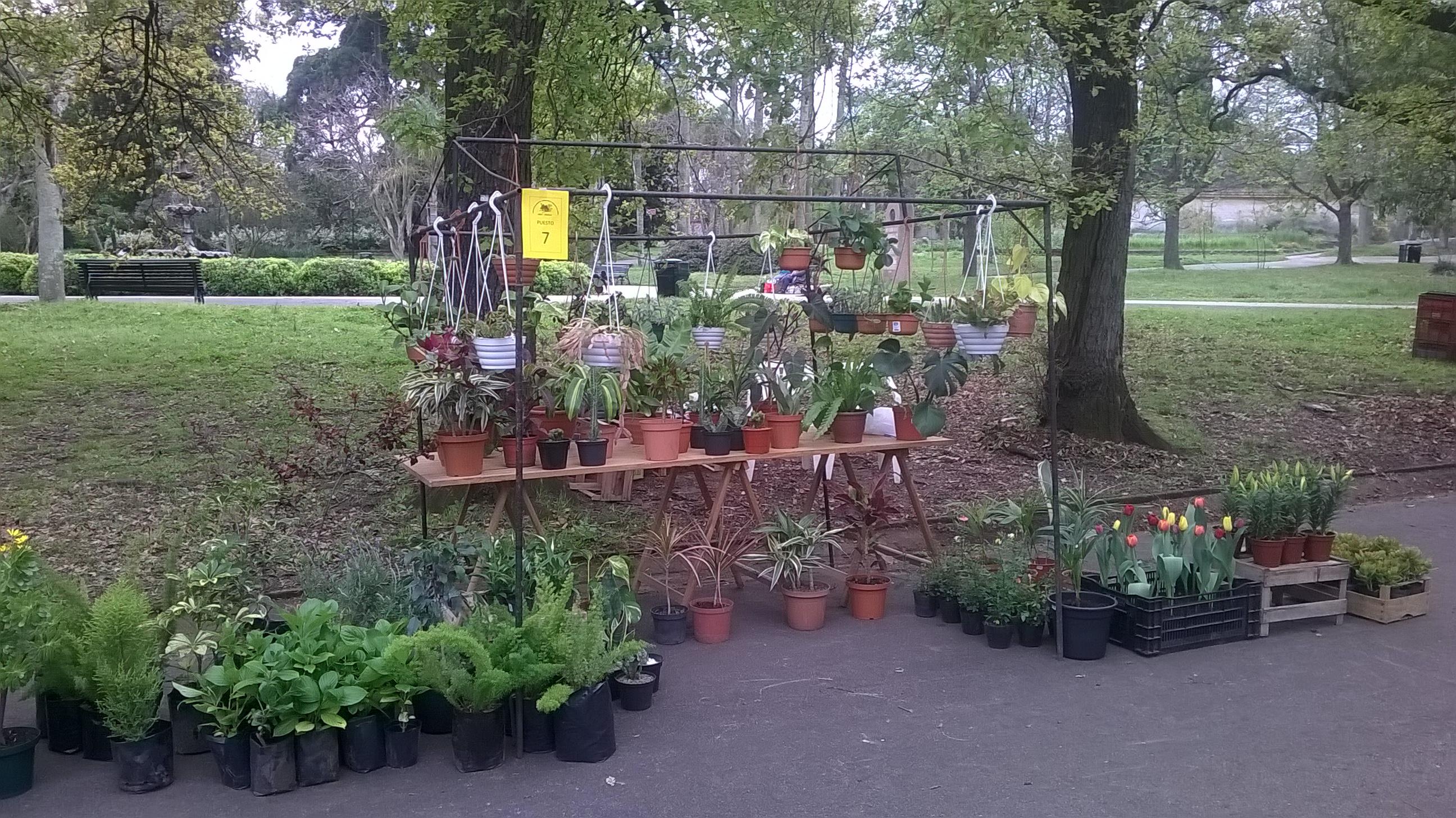 Feria de plantas octubre en el jard n bot nico museo for Actividades en el jardin botanico