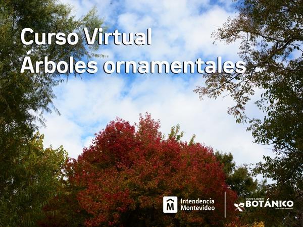 Curso Virtual Árboles Ornamentales junio 2021.