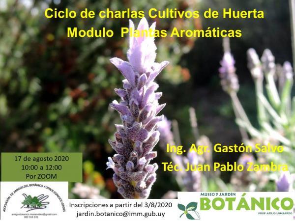 Curso Virtual Huerta Módulo II Plantas Aromáticas