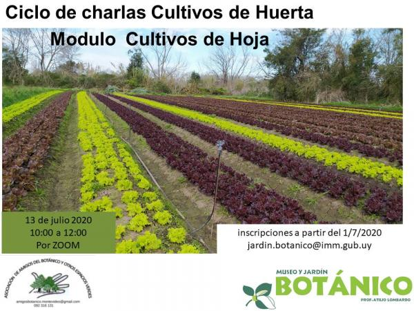 Curso VIRTUAL Cultivos de Huerta - Módulo I - Cultivos de Hoja