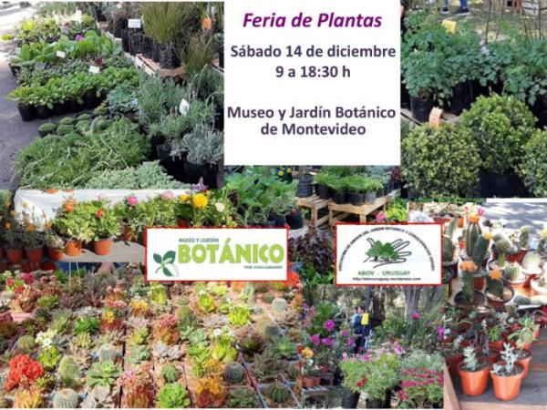 Feria de Plantas Diciembre 2019