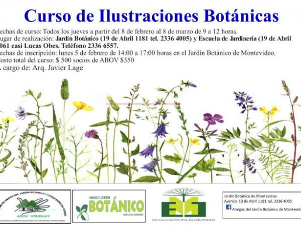 Curso de Ilustraciones Botánicas 2018