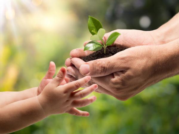 Curso Agricultura en pequeñas áreas PARA DOCENTES