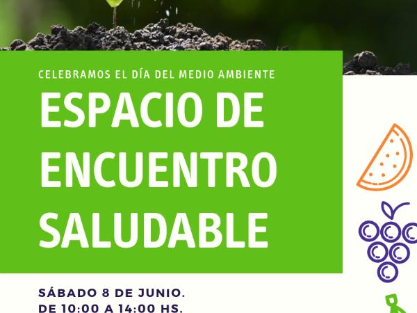 Encuentro de espacio Saludable JUNIO 2019