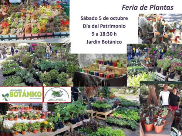 Feria de Plantas Octubre 2019