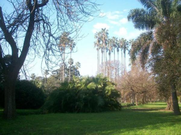 """Jardín Botánico """"Especies ex-situ"""""""