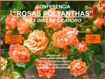 """Conferencia """"Rosas Polyanthas"""""""