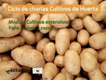 Curso VIRTUAL Cultivos de Huerta - Módulo IV - Cultivos extensivos