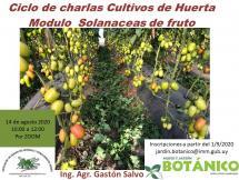 """Afiche Curso Virtual Huerta Módulo III """"Solanaceas de fruto"""""""