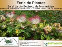 Feria de plantas setiembre 2021