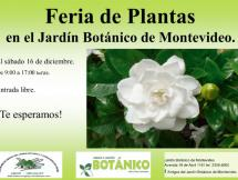 Feria de plantas de Verano