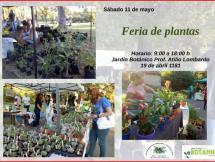 Feria de Plantas Mayo 2019
