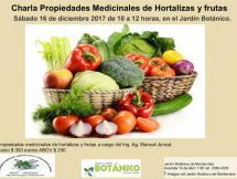 Charla propiedades medicinales de hortalizas y frutas