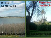 """Curso """"Conservación de especies vegetales in-situ, ex-situ"""""""