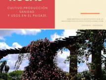 Curso de Rosas Mayo 2019